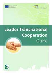Leader Transnational Cooperation Guide