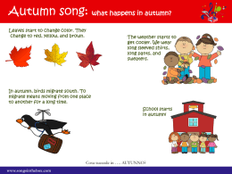 Autumn song: what happens in autumn?