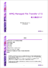 W MQ Managed File Transfer v7.5 導入 構成