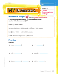 Homework Helper _ Lesson 5 Convert