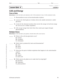 Cells and Energy Lesson Quiz  A True or False LESSON 4
