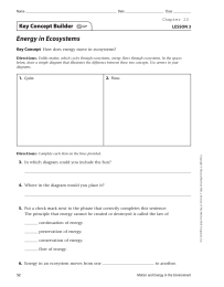 Energy in Ecosystems Key Concept Builder LESSON 3 Key Concept