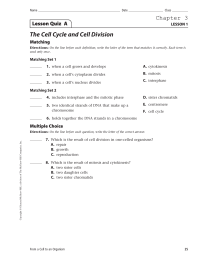 The Cell Cycle and Cell Division Chapter 3 Lesson Quiz  A Matching