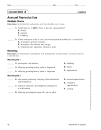 Asexual Reproduction Lesson Quiz  A Multiple Choice LESSON 2