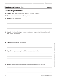 Asexual Reproduction Key Concept Builder LESSON 2 Key Concept