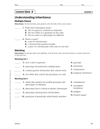 Understanding Inheritance Lesson Quiz  A Multiple Choice LESSON 2
