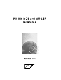 MM MM-MOB and WM-LSR Interfaces S