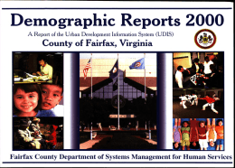 2000 Demographic Reports of County