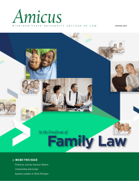 Amicus Family Law At the Forefront of
