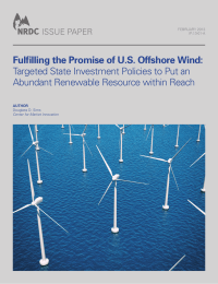 Fulfilling the Promise of U.S. Offshore Wind: ISSUE PAPER